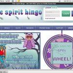 Free Spirit Bingo 3 Reels