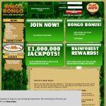 Promo Code Bingo Bongo