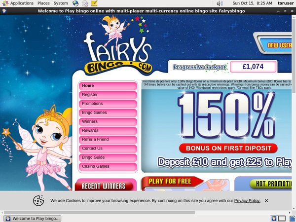 Fairys Bingo Online Slots