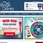 Bingo Diaries Idebit